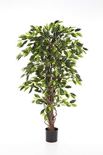 artplants Set 'Kunstpflanze Ficus Benjamini + Gratis UV Schutz Spray' – Kunstbaum Ficus JARLAN, Echtstämme, grün, 180 cm