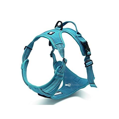 Avant Gamme Design New 2016True Love Harnais pour chien, Your. anti-étranglements 3m couture réfléchissante pour une meilleure visibilité la nuit - Large - bleu