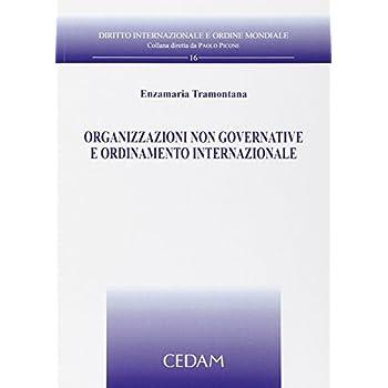 Organizzazioni Non Governative E Ordinamento Internazionale