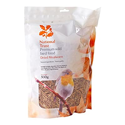 National Trust Wild Bird Food Premium Mealworms 500g by National Trust