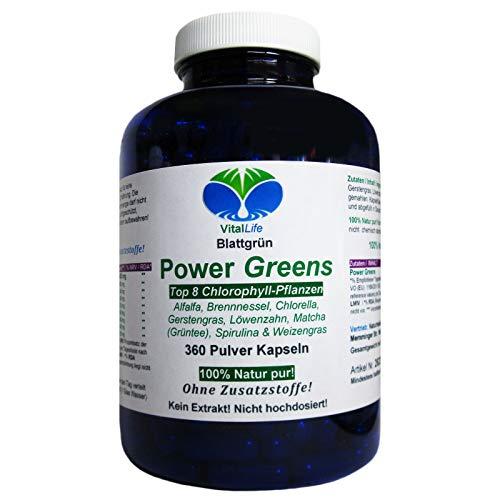 Power Greens Top 8 Chlorophyll Pflanzen 360 Pulver Kapseln Natur Pur NICHT hochdosiert KEIN Extrakt OHNE Zusatzstoffe OHNE Füllstoffe. Hergestellt und abgefüllt in Deutschland. 26333 -