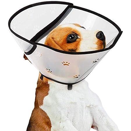 Pssopp Pet Elizabethan Halsband Hund Halsbänder Halskrause aus Kunststoff Schutzkragen Elisabethanischer Kragen Kegel Krägen Besondere Schutz für Haustiere Katzen, Kleine Hunde und Kaninchen