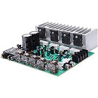 TANOU Placa del Amplificador De Audio Amplificador De Potencia De ReverberacióN Digital De Alta Fidelidad 250 W X 2 2.0 Preamplificador De Audio Trasera con Control De Tono E3-004