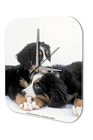 Wall Clock Birthday Congratulations Marke Puppy Bernese mountain dog Decorative 10x10