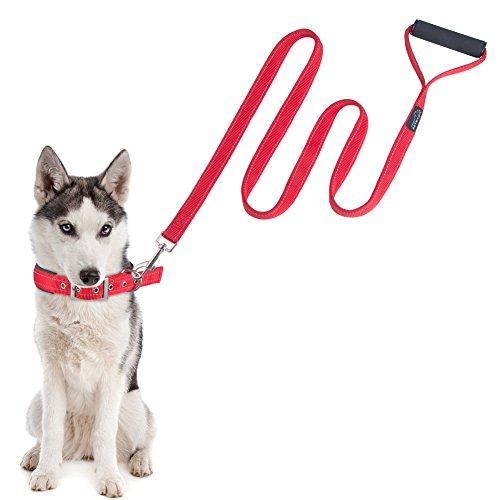 reflective-dog-collar-lead-set-petbabab-padded-metal-buckle-adjustable-training-collar-and-leash-com