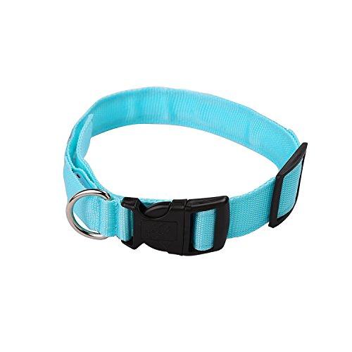 iManson LED Hundehalsband Light – Hunde Leuchthalsband Universell – 3 Modi – L Code(Blau) - 4
