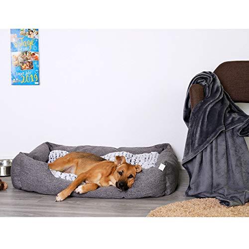 dibea DB00752, Hundebett mit wendbarem Hundekissen, 110 x 80 cm, grau (Farben/Größe wählbar)