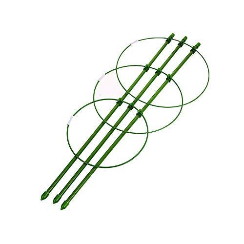 Joan Domguez Blumen-Halterung, für den Garten, für den Innenbereich, Rose, Blumen-Stumpe, Grün -