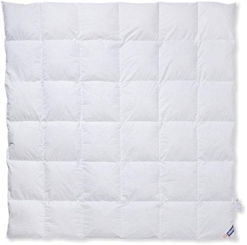 Hanskruchen Pro Sleep Komfort Kassettendecke, Warm, Baumwolle, 200 x 200 cm