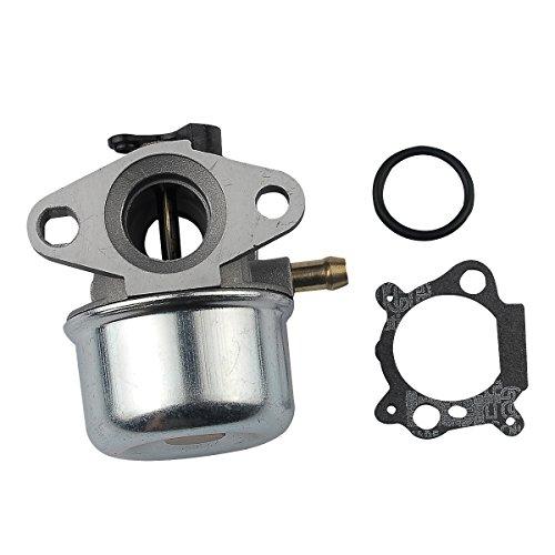 HIPA Carburateur pour Moteur Briggs & Stratton 799868 498170 497586 498254 497314 497347 Tondeuse à Gazon