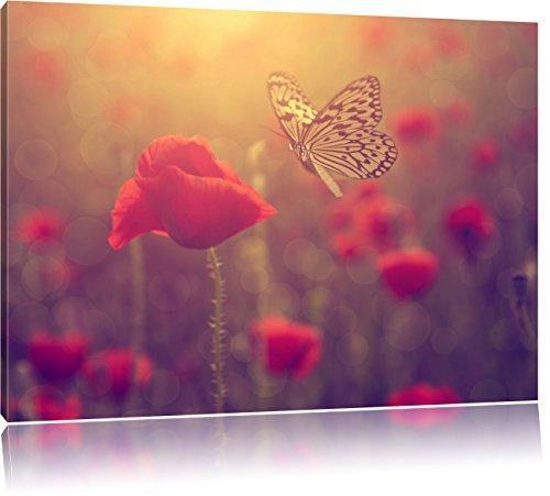 Mohn und Schmetterling, Format: 100x70 auf Leinwand, XXL riesige Bilder fertig gerahmt mit Keilrahmen, Kunstdruck auf Wandbild mit Rahmen, günstiger als Gemälde oder Ölbild, kein Poster oder Plakat (Mohn Bilder)