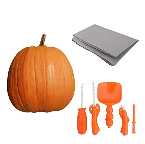 1 mittler Halloweenkürbis Schnitzkürbis und Schnitzset mit Papier -