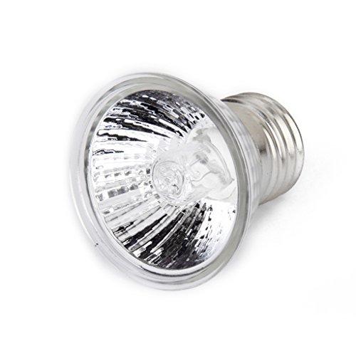 220-240V-50W-Mini-Spot-Halogne-Rflecteur-Ampoule-Lampe-pour-Reptile