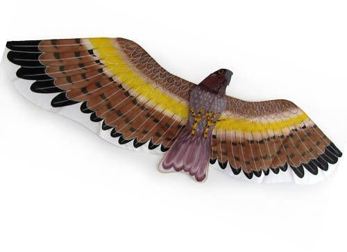 3d-brown-facon-eagle-kite-flying-toy-hobby-outdoor-park-beach-fun-garden-farm-defense-bird-pests-sca