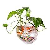 huyiko Fischschale, zum Aufhängen, Acryl, zur Wandmontage, Pflanzentopf, Fisch, Dekoration, Blumenkasten, Acryl, Multi-Color, TP