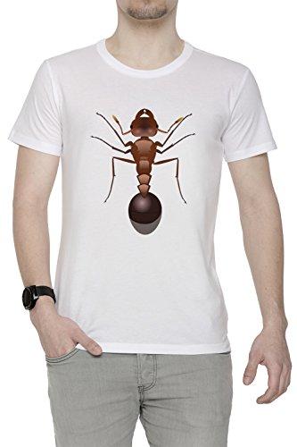 Fourmi Blanc Coton Homme T-Shirt Col Ras Du Cou Manches Courtes White Men's T-Shirt