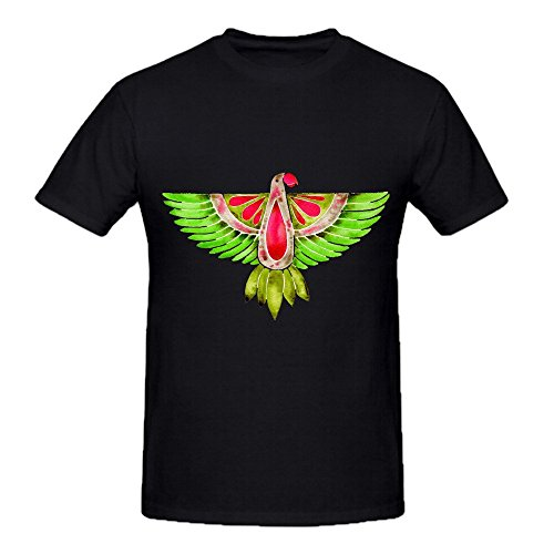lovebird-parrot-mens-crew-neck-art-shirt-large