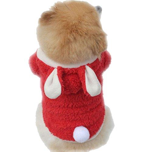 YiJee Kleine Hunde Winter Verdickung Hoodie Mantel Haustier Warm Kleidung Sweatshirts Rot M (Rote Kleidung Hund-mäntel)