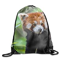 HouyunCC Cool Drawstring Backpack Animal Red Panda Print Drawstring Backpack Rucksack Shoulder Bags Gym Bag