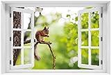 Wallario selbstklebendes Poster - Eichhörnchen auf einem Ast in Premiumqualität, Größe: 61 x 91,5 cm (Maxiposter)
