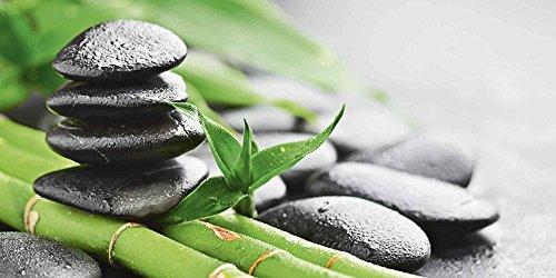 Artland Qualitätsbilder I Glasbilder Deko Glas Bilder 60 x 30 cm Wellness Zen Stein Foto Grün D8QF Wachstum - Lavasteine Bambus (Wohnungen Marke Bambus)