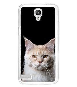 ifasho Designer Phone Back Case Cover Xiaomi Redmi Note :: Xiaomi Redmi Note 4G :: Xiaomi Redmi Note Prime ( HardCore Killing It )