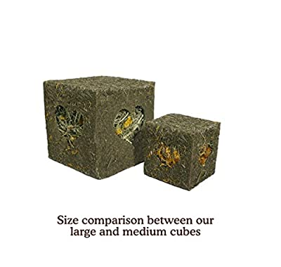 Rosewood Naturals I Love Hay Forage Cube Treat and Toy for Rabbits/Guinea Pigs/Chinchillas and Degus, Large from Rosewood