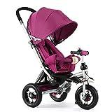 MIAO CODE Triciclo para Niños 3 En 1 con Toldo De Bicicleta Ajustable para Niños Trike Adecuado para Niños De 12 Meses A 5 Años,Purple