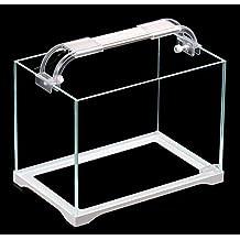 Pecera de cristal ecológica pequeña para escritorio, acuario pequeño ...