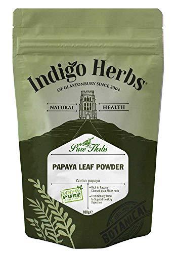 Indigo Herbs Papaya Blatt Pulver 100g (Papaya-saft Bio)