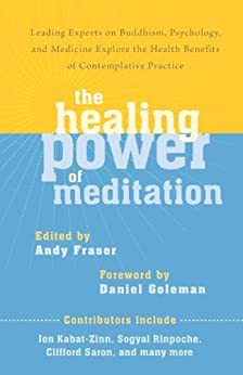 The Healing Power of Meditation: Leading Experts on Buddhism, Psychology, and Medicine Explore the Health Benefits of Contemplative Practice von [Fraser, Andy]