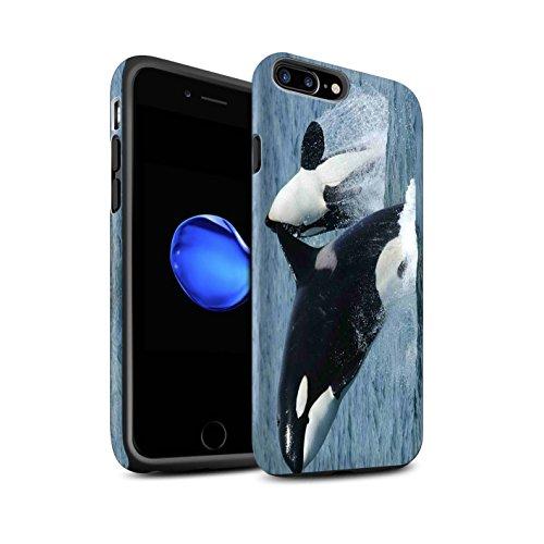Coque Matte Robuste Antichoc de STUFF4 / Coque pour Apple iPhone 6S / Dauphin Design / Faune Marine Collection Orque/Épaulard