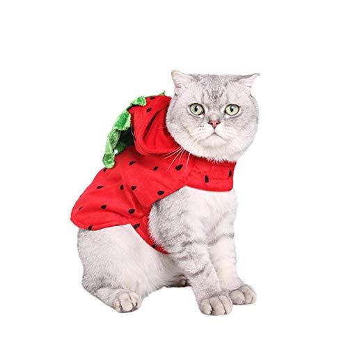 Your little world Hunde-Kostüm für Halloween, Erdbeere, für Hunde und Katzen