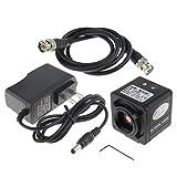 Homyl 1200 TVL CCD Digitale Digitale A Colori per Dispositivo di Visione Notturna