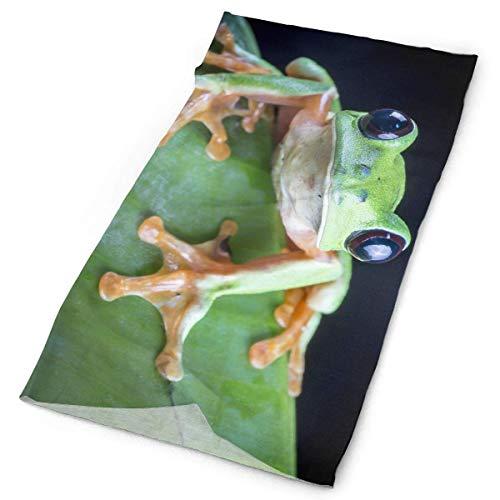 AIQIIA Once Critically Endangered Black-Eyed Leaf Frog Unisex Sports Variety Scarf Head Scarf -