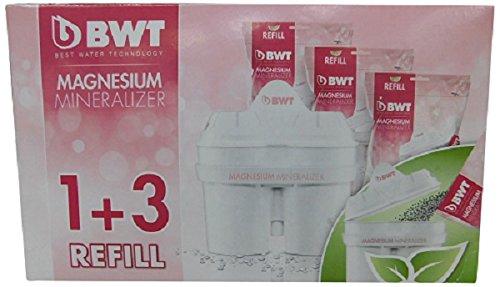 comprare on line BWT Filtro con tecnologia brevettata al Magnesio Mg2+. Confezione eco-ricarica 1 filtro + 3 ricariche in bustina. prezzo