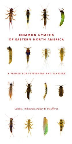 Common Nymphs of Eastern North America: A Primer for Flyfishers and Flytiers (Keystone Books?de?ed??ede??d???de?ed???de??d???) by Caleb J. Tzilkowski (2011-09-21)
