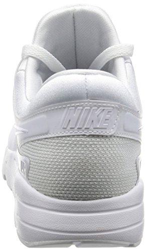 Nike Air Max Zero Essential, Chaussures de Gymnastique Homme Blanc Cassé (White/white/wolf Grey/pure Platinum)