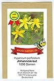 Johanniskraut - Bienenweide - Hypericum perforatum - Zier-/Arzneiplanze - Sorte Topaz - 1000 Samen