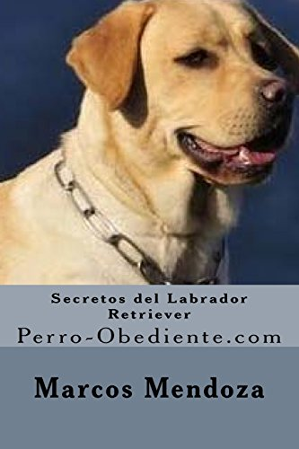 Secretos del Labrador Retriever: Perro-Obediente.com