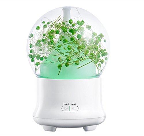 Creative humidificateur nouvelle fleur éternelle aromathérapie huile essentielle diffuseur USB lumière de nuit peut être chronométré humidificateur atomiseur, adapté pour SPA, yoga