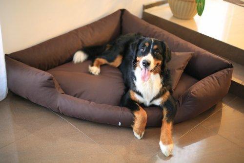 Artikelbild: TR3-01 Hundebett TRIVIA Eckbett Eckhundebett Hundesofa Hundebett Gr. M 80cm Braun