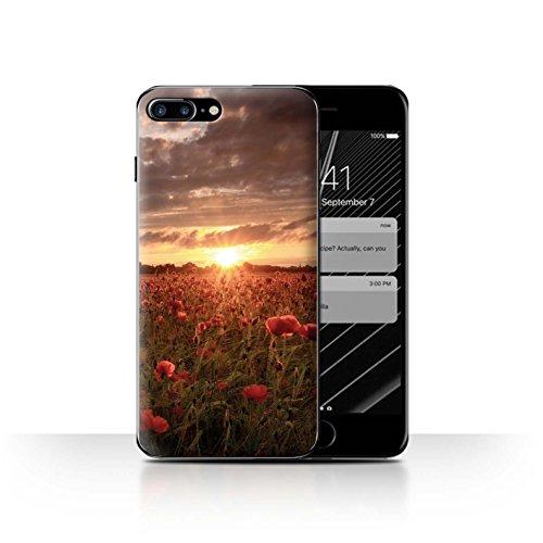 Stuff4 Hülle / Case für Apple iPhone SE / Mohnfeld Muster / Mohnblumen Kollektion Sonneneinstrahlung