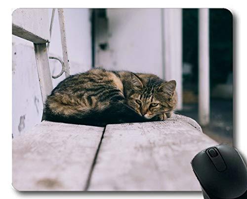 Mauspad, Mauspad für Haustierkatze, Mauspad für Computer ()