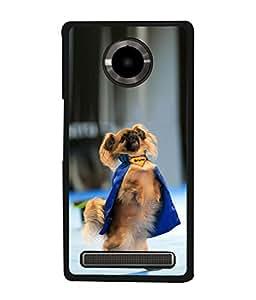 PrintVisa Dancing Bruno Dog High Gloss Designer Back Case Cover for YU Yuphoria :: YU Yuphoria YU5010