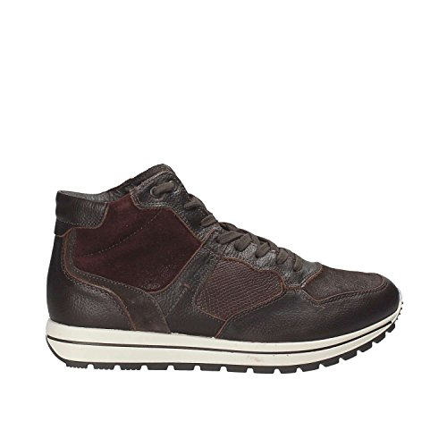 Igi & Co 8744 Sneakers Homme Marron