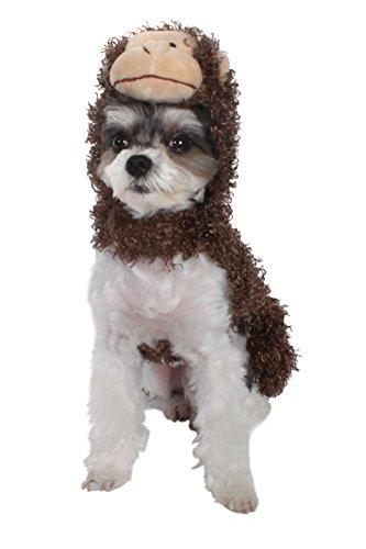 AKC - American Kennel Club Halloween Kapuzen AFFE Pet Kostüm