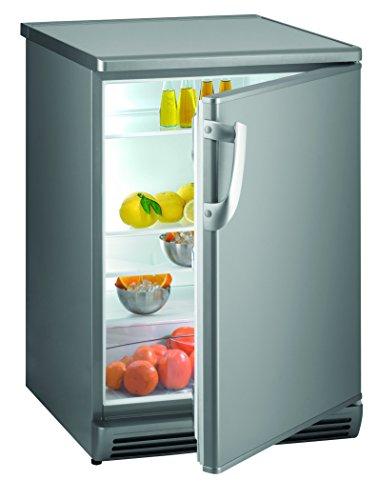 Gorenje R 6093 AX Unterbaufähiger Kühlschrank