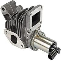Fuel Parts EGR221 Valvula de Recirculacion de los Gases de Escape (RGE) Y Sensor
