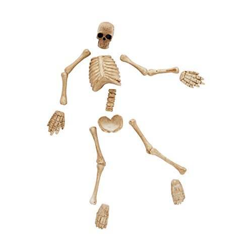 Department 56 Halloween Village Boneyard Bag-o-Bones Zubehör, 0.79-inch
